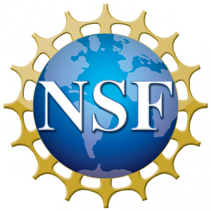 cropped-NSF_4-Color_bitmap_Logo.png